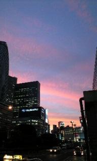 *綺麗な夕焼け*
