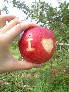 *ん?リンゴが?*